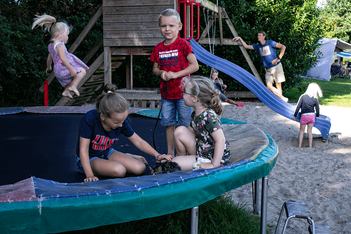 Ravotten op de trampoline in Drenthe